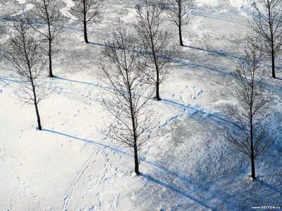 Tapeta: Krásy zimy 12