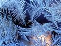 Tapeta Krásy zimy 8
