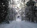 Tapeta Krásy zimy 9