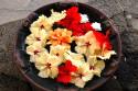 Tapeta Květy Ibišků