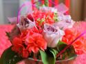 Tapeta Kytice rúže a pelargonie