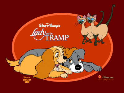 Tapeta: Lady a tramp 4