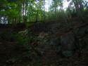 Tapeta les zákruhy