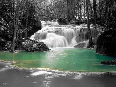 Tapeta: lesní laguna