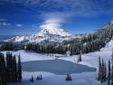 Tapeta Lesní porost horský 10