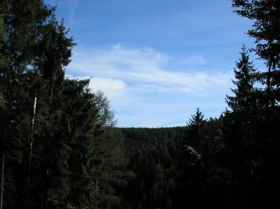 Tapeta: Lesy nad Kunčinou 22