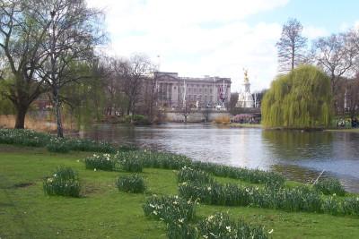 Tapeta: Londýn1