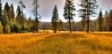 Tapeta Louka v Yosemitech