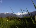 Tapeta Macro Mount Cook
