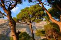 Tapeta Makarska 1