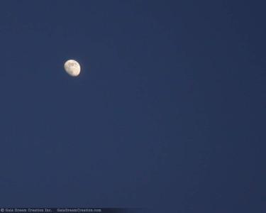 Tapeta: Měsíc na obloze