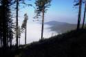 Tapeta mlha v horách