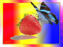 Tapeta motýl na jahodě