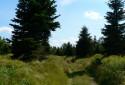 Tapeta Na horách je krásně...01