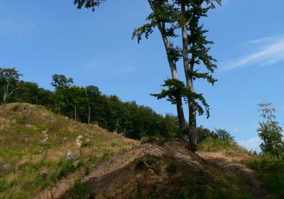 Tapeta: Na horách je krásně...04