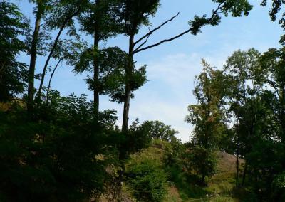 Tapeta: Na horách je krásně...07