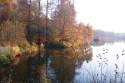 Tapeta rybník