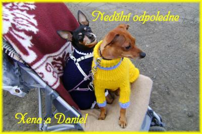 Tapeta: Neděle odpoledne procházka
