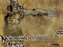 Tapeta Neverwinter Nigths 20