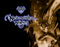 Tapeta Neverwinter Nigths 24