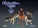 Tapeta Neverwinter Nigths 32