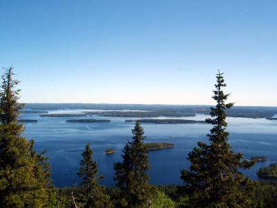 Tapeta: NP Koli2, Finsko