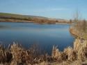 Tapeta odpoledne u rybníka