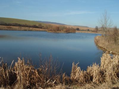 Tapeta: odpoledne u rybníka