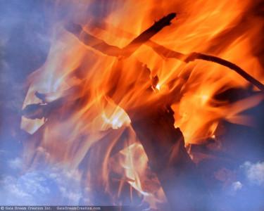 Tapeta: Oheň 2