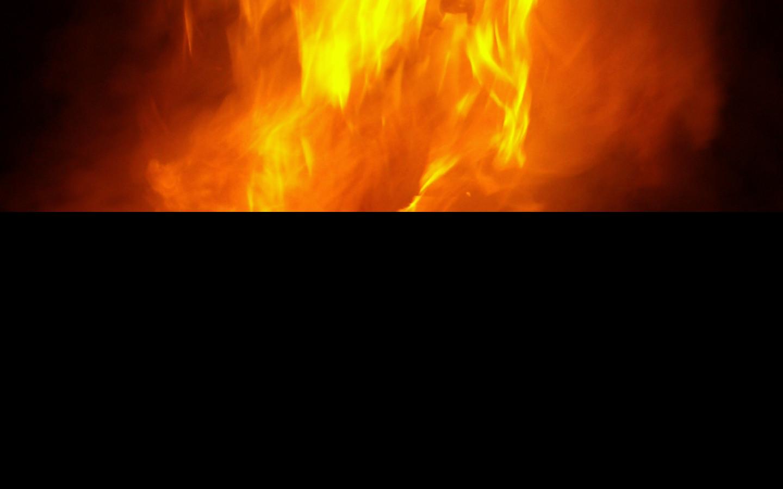 Tapeta ohnivy_lev