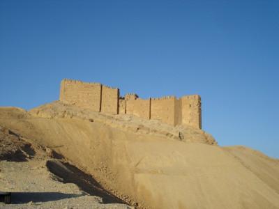Tapeta: Palmyrský hrad