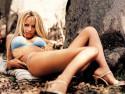 Tapeta Pamela Anderson 5
