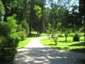 Tapeta Park na soutoku