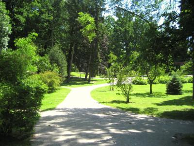 Tapeta: Park na soutoku