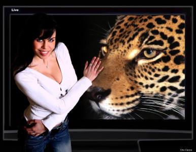 Tapeta: Plazmová obrazovka