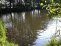 Tapeta Plzeň-Bolevecký rybník 01
