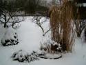 Tapeta Pod sněhovým příkrovem