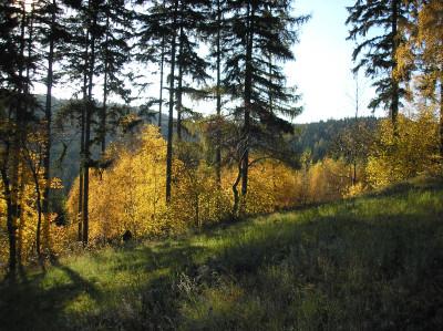 Tapeta: Podzim nad Radiměří 1