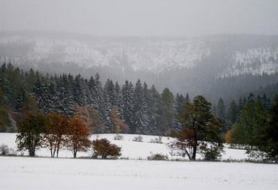 Tapeta: Podzim - Zima