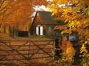 Tapeta Podzim na Zemi 4