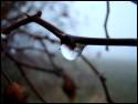 Tapeta Podzimní čas