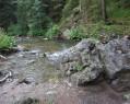 Tapeta potok