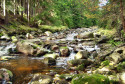 Tapeta potok s oblazky