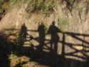 Tapeta Průhonický park,říjen 2008
