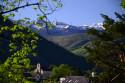Tapeta Pyreneye 5