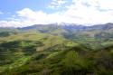 Tapeta Pyreneye 7