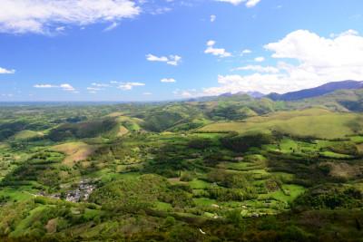 Tapeta: Pyreneye 8
