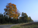 Tapeta Radiměř-podzim 05