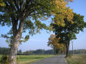 Tapeta Radiměř-podzim 09