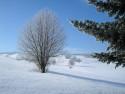 Tapeta Radiměř-zima nad rančem 02